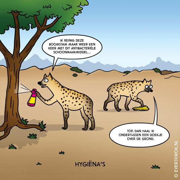 hygienas